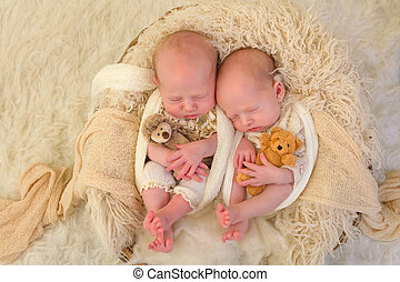 Identical twins with teddy bears