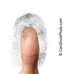 identificación, biometric