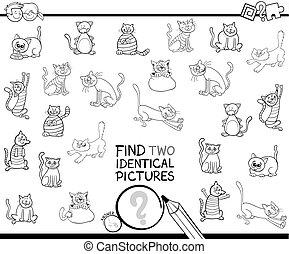 identyczny, kolorowanie, obrazy, dwa, kot, książka, znaleźć