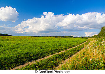 idilic rural landscape with green grass field, blue sky,...