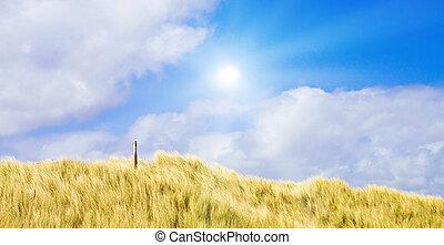 idilliaco, dune, con, luce sole
