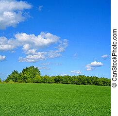 idilliaco, estate, paesaggio
