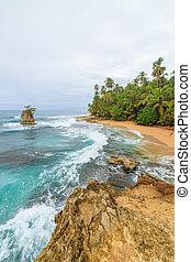 idilliaco, spiaggia, manzanillo, costa rica