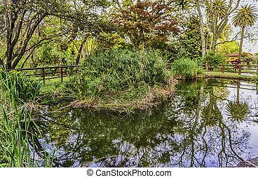 Idillic pond inside a public park in Rome, Italy