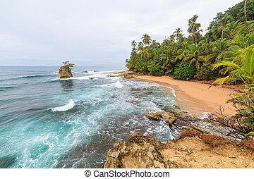 idillikus, tengerpart, manzanillo, costa rica