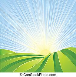 idillikus, zöld, megfog, noha, napfény, küllők, blue, ég