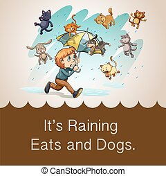 Idiom - It is raining cats and dogs