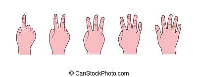idioma cuerpo, gesto mano, contar, uno, a, cinco, dedos, conde, señales