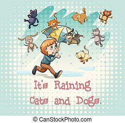"""Idioms - Flashcard of idioms """"It's raining cats and dogs"""""""
