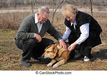 idoso, par, carícias, um, cão