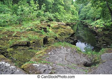idylic, rivière, scène