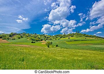 Idyllic africultural green landscape of Croatia