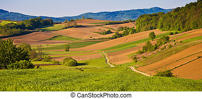 Idyllic agricultural landscape panoramic view