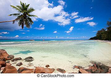 Idyllic beach in Seychelles - Idyllic tropical white sand ...