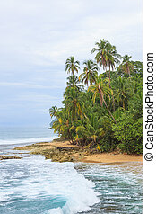 Idyllic beach Manzanillo Costa Rica - Idyllic tropical beach...