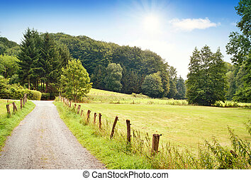 Idyllic country road