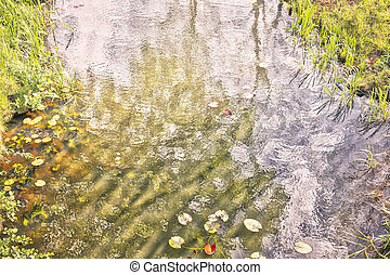 idyllic creek with reflections, for backgrounds