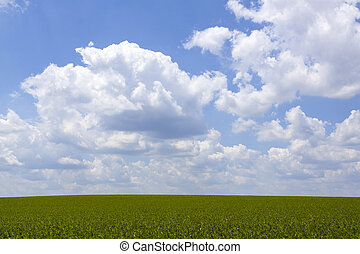 Idyllic Farmland Background with Cloudy Sky