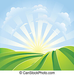 Idyllic green fields with sunshine rays and blue sky -...
