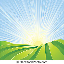 Idyllic green fields with sunshine rays and blue sky - ...