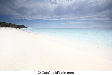 idyllic, jervis, baía, ligado, um, quentes, dia verão