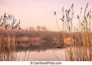 Idyllic lake in the autumn