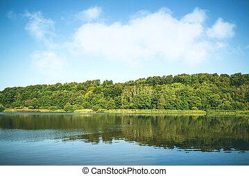 Idyllic lake landscape with trees