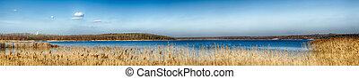Idyllic Lake with reeds