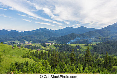 Idyllic landscape in the Alps with fresh green meadows