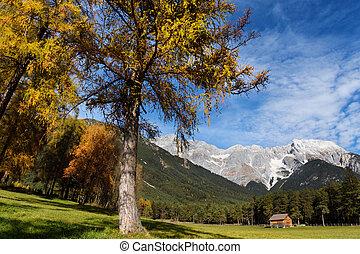 Miemenger Plateau in colorful autumn season. Austria, Tyrol.