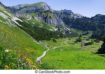 Idyllic mountain scene hiking in the mountains in a sunny day Austrian Alps, Rofan, Karwendel.