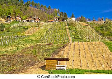Idyllic mountain vineyards village of Prigorec near...