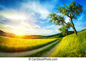 idyllic, paisagem rural, em, pôr do sol