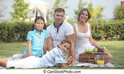 Idyllic picnic - Family idyll on a sunny picnic day