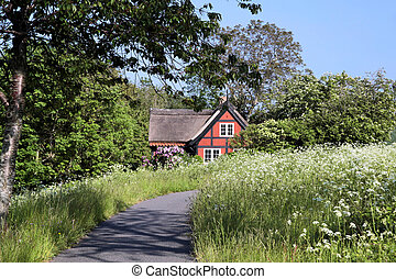 Idyllic red holiday cottage with flowering meadow