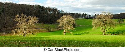Idyllic rural landscape in nice light