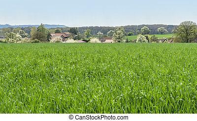 small rural village