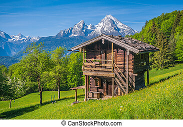 Idyllic springtime landscape in the Alps with traditional mountain lodge