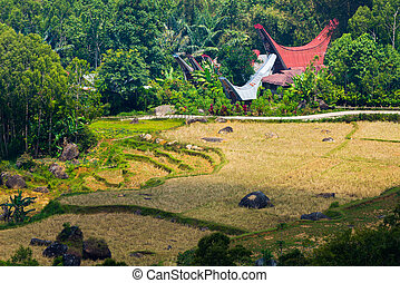 Little traditional village with tipical boat shaped roofs in idyllic location among beautiful terraced rice paddies and jungle in Tana Toraja, South Sulawesi, Indonesia.