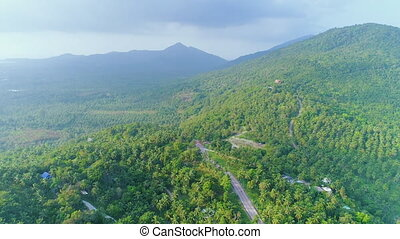 Idyllic Tropical Wood Landscape Aerial Overview. Panoramic Exotic Island Palm Tree Plantation Scenery Mountain Background Copter View. Jungle Forest Asphalt Road Thailand Koh Phangan Travel Concept 4K