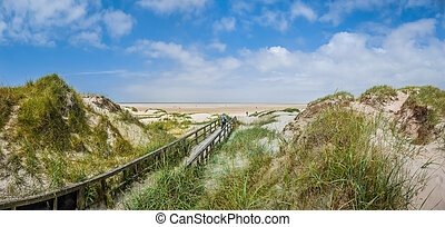 Idyllic view of european north sea dune landscape at beach