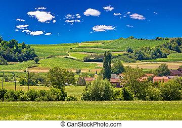 Idyllic village in pure green nature, Zagorje region of...