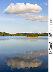 Idyllic wild lake in summer