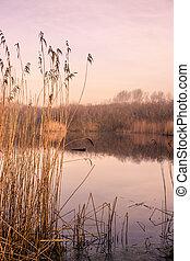 idylliczny, jezioro