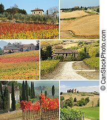 idyllique, collage, maison, toscan, paysage