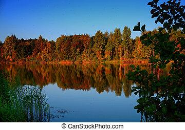 idyllique, lac, réflexions, de, feuillage chute