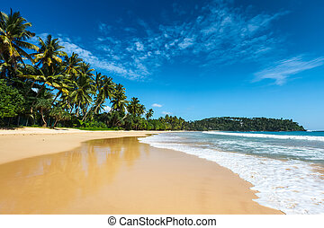 idyllique, plage., lanka, sri