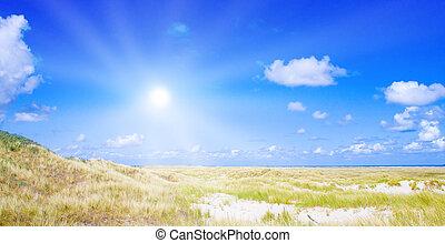 idyllisch, dünenlandschaft, mit, sonnenlicht