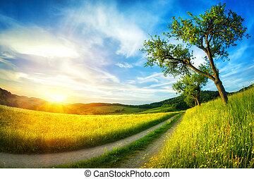 idyllisch, landelijk landschap, op, ondergaande zon