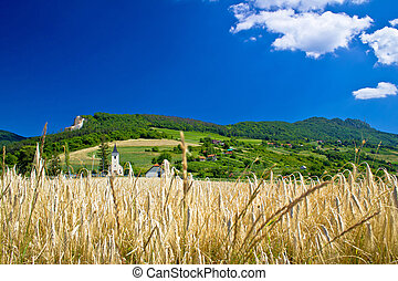idyllisch, landwirtschaftlich, berglandschaft, von, kroatien